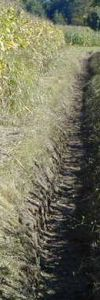 pcxxxx2006_017